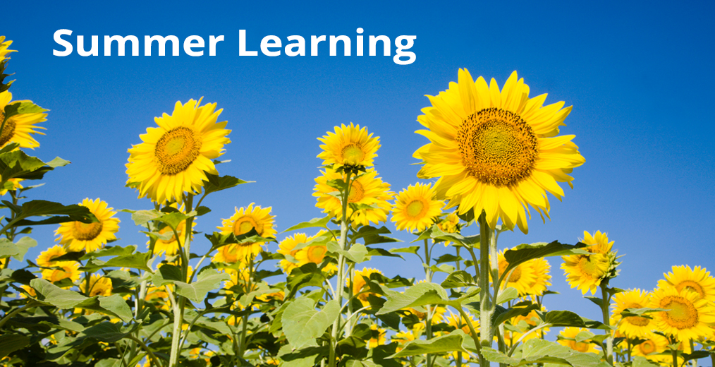 APS Summer Learning Information